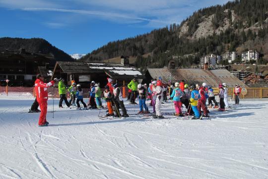skialpin1.jpg